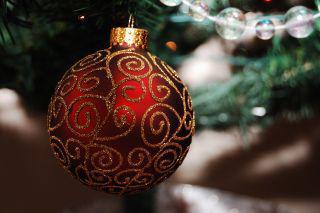Musik i juletid med stråkkvartetten Wulfson Quartet